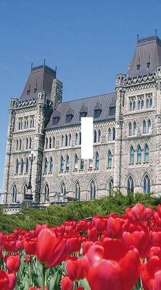 Canada Ottawa Light Switch Plate travel wall by SindyOriginalDecor