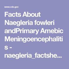 Facts About Naegleria fowleri andPrimary Amebic Meningoencephalitis - naegleria_factsheet508c.pdf
