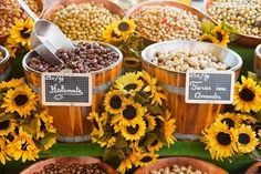 country fair theme party supplies - Google Search