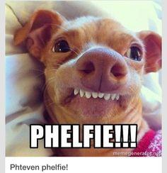 I love Phephen