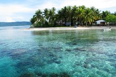 Arborek Raja Ampat Papua Indonesia #travel #tour #beach #island #indonesia #tourguide #visitindonesia