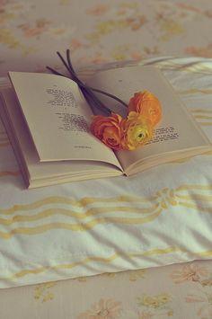 ♔ livres