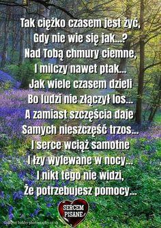Beautiful Flower Arrangements, Beautiful Flowers, Texts, Audi A6, Quotes, Quotations, Captions, Quote, Shut Up Quotes