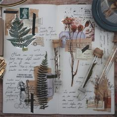 20 Pieces of Botanical PET Sticker Series - Planner, Journal, Craft, Scrapbooking, Decoration - art - Art Journal Pages, Album Journal, Scrapbook Journal, Bullet Journal Ideas Pages, Bullet Journal Inspiration, Diy Scrapbook, Art Journals, Planner Journal, Journal Prompts