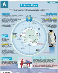 Educational IG on Antarctica French Teaching Resources, Teaching French, Study French, Learn French, Montessori, Flags Europe, Medical Mnemonics, Geography Map, French Classroom