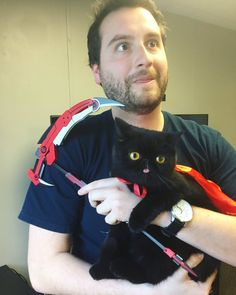 Rwby cat Steven Universe, Vocaloid, Roster Teeth, Funny Cute, Hilarious, Red Like Roses, Rwby Red, Achievement Hunter, Team Rwby