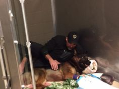 (Jethro and his partner (Photo courtesy: Canton Police) 3 yr. old K-9 Jethro shot 4 times in line of duty. I know having his partner with him is the best medicine, wishing the best & prayers for a full recovery.
