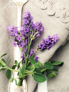 Place Setting Is Perfectly Beautiful With A Touch Of Lavender