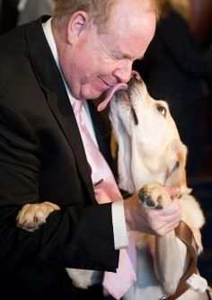 Michael Hingson was working on the floor of the WTC on the morning of Sept. Blind since birth, Hingson had his guide dog, Roselle guided Hingson down 78 flights of stairs and to safety outside the building. I Love Dogs, Puppy Love, Baby Animals, Cute Animals, War Dogs, Guide Dog, Service Dogs, Working Dogs, Four Legged
