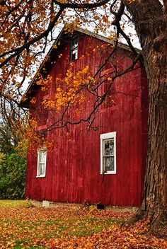 Red Barn in Autumn #coupon code nicesup123 gets 25% off at  www.Provestra.com www.Skinception.com and www.leadingedgehealth.com