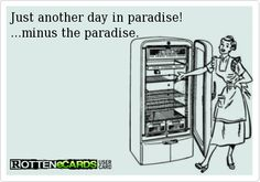 Just another day in paradise! ...minus the paradise.