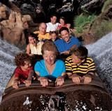 Splash Mountain®