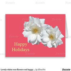 Lovely white rose flowers red happy holidays greeting card
