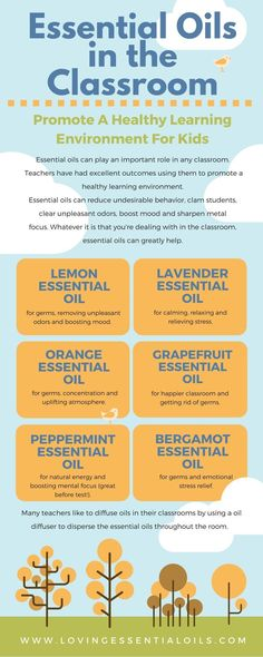 Best Essential Oils For Classroom Infographic - Essential Oils can do wonders in a classroom. Wondering what oils are best and how to use them? Read more at: http://www.lovingessentialoils.com/blogs/essential-oil-tips/6-best-essential-oils-for-classroom