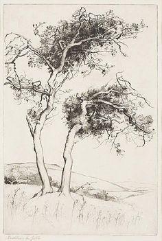 Kathleen Mary Jebb(British, 1878-?)  The fairy tree  etching