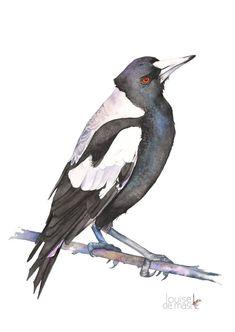 Magpie watercolour painting print, Australian Magpie painting, magpie watercolour, 5 by 7 size, M10816, black bird print