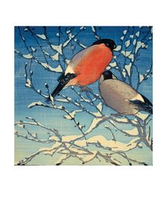 Bullfinches. Woodcut by Allen William Seaby