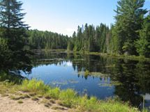 Algonquin Provincial Park. I love hiking, camping and canoeing here in the summer time.