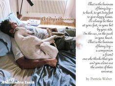 Dogginess <3