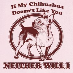 If My Chihuahua Doesn't Like You... Funny Novelty T by RogueAttire, $18.99
