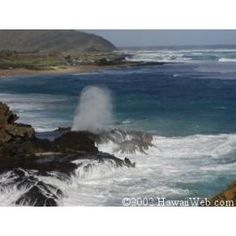 Halona Blow Hole at the North Shore-Lava tube under water.. place where whales play as well!