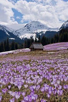 The Tatra Mountains, Poland: