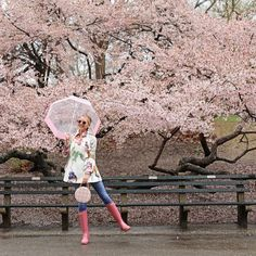 Walking through the Cherry Blossoms in Central Park! Rainy day oufit #rainstyle