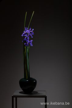 Ikebana with purple Flowers - Ilse Beunen