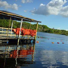 Explorar asflorestas da Amazôniapresenciaro encontro das águas do Rio Solimões com o Rio Negro conhecer comunidades indígenas navegarpelos igarapés e igapós apreciara vitória-régiaenadar com os botos-cor-de-rosa em um só dia? Sim é possível!http://bit.ly/DayTourAm --------------- #MTur #ViajePeloBrasil #DicasdeDestino #BelezasdoBrasil #PartiuBrasil #mandabem #ficaadica #decolar #projetoviajandosempre#likeforlike #follow4follow #picoftheday #travel #LoveTravel #TravelLove #amazing #instaphoto…