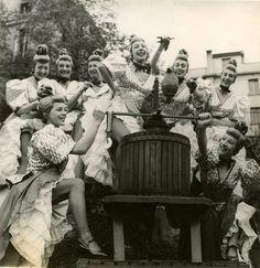 Les danseuses du Moulin Rouge font les vendanges de la vigne de Montmartre 1954
