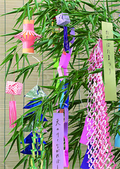 Tanabata for Tanabata wishes are hung from bamboo branches Japanese Theme Parties, Tanabata Festival, Star Festival, Japanese Festival, Cool Paper Crafts, Magic Symbols, Kew Gardens, Festival Decorations, Japanese Culture