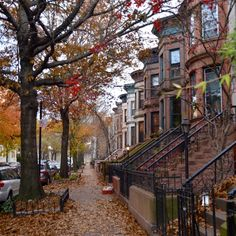 Brooklyn street in autumn colors. Isn't it lovely? There is no place like home! I miss this!