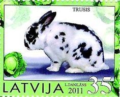 Latvian stamp with rabbit, 2011 year of the rabbit