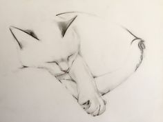 Cat Art — Kellas Campbell Art