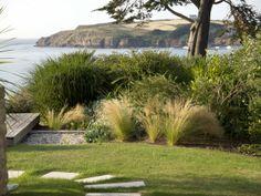 Comment aménager un jardin exposé au vent ? // http://www.deco.fr/jardin-jardinage/arbre-arbuste/actualite-703289-comment-amenager-jardin-expose-vents-haie-plantes.html