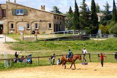 Au coeur de la vallée de la Cèze, Méjannes le Clap est une commune à l'accent très sportif. Beaux Villages, Camping, Dolores Park, Travel, Outdoor Gardens, Tourism, Athlete, Campsite, Viajes