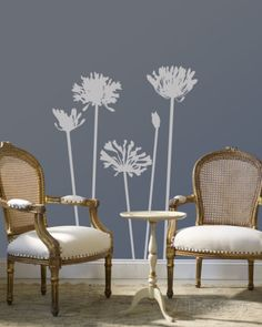 Grey Agapanthus Wall Decal at AllPosters.com