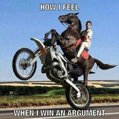 Animal memes How I feel when I win an argument. Memes Humor, Funny Memes, Hilarious, Funny Quotes, 9gag Funny, Funniest Memes, Funny Cartoons, Animal Memes, Funny Animals