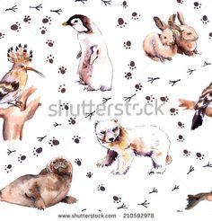 Zoo pattern with foot prints: bear animal, rabbit, seal and hoopoe bird. Watercolor seamless sketch - stock photo