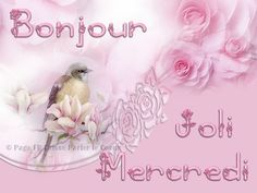Bonjour, Joli Mercredi #mercredi oiseau fleurs