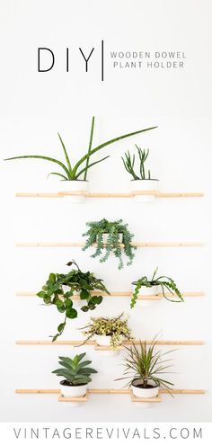 DIY Wooden Dowel Plant Holder - Vintage Revivals This Project .- DIY Wooden Dowel Plant Holder – Vintage Revivals This project is a great way to … - Diy Wand, House Plants Decor, Plant Decor, Wall Of Plants, Plant Wall Decor, Green Plants, Bois Diy, Diy Holz, Reno