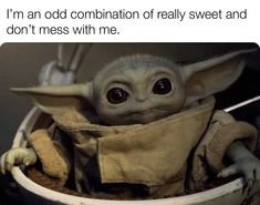 Yoda Funny, Yoda Meme, Stupid Funny Memes, Funny Posts, Hilarious, Funny Stuff, Funny Shit, Funny Pick, Funny Things