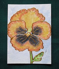 ACEO Original Flower Water Colour Miniature Painting ' by greanbea, $5.50