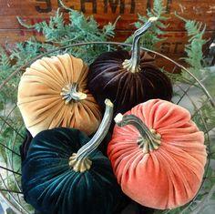 Scented Velvet Pumpkins, SET of 4:  orange, mustard, dark green, rich brown  IMMEDIATE SHIPPING by YourHeartsContent on Etsy https://www.etsy.com/listing/205275566/scented-velvet-pumpkins-set-of-4-orange