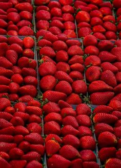 Beautifully #red strawberries.