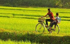 MAI CHAU TREKKING TOURS, TREKKING TOURS VIETNAM - mai chau tours, mai chau trekking tours, trekking tours in vietnam