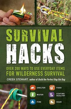 6 Trees Every Survivalist Should Know & Why –