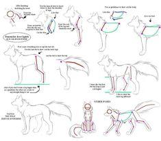 Manga Drawing Tips (Anime Drawing Tutorial) - Drawing Techniques, Drawing Tutorials, Drawing Tips, Art Tutorials, Animal Sketches, Animal Drawings, Art Sketches, Drawing Animals, Wolf Sketch