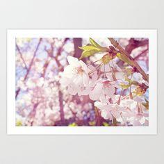 Sakura Cherry Blossom Art Print by AFE Images (Amalia Ferreira-Espinoza) - $16.64