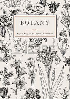 Botanique Vintage floral card Vector illustration de gravures de style Fleurs noir et blanc Banque d'images